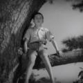 【ネタバレ注意】映画「風の中の子供」感想/評価/あらすじ|親子の信頼関係の強さに心惹かれる
