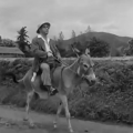 【ネタバレ注意】映画「小原庄助さん」感想/評価/あらすじ|古き良き、日本の農村社会の豊かさを感じる