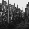 【ネタバレ注意】映画「ビルマの竪琴・総集篇」感想/評価/あらすじ|目に見えるものを超越した存在を感じる