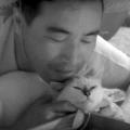 【ネタバレ注意】映画「猫と庄造と二人のをんな」感想/評価/あらすじ|猫のリリーがノーブルに見えてくる